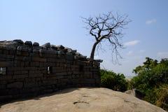 寺庙马马拉普拉姆 免版税图库摄影