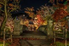 寺庙Eikando在晚上 库存图片