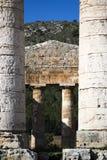 寺庙Segesta 6 库存照片