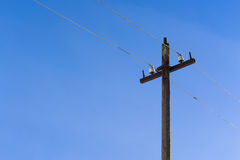 导线的一根老杆在蓝天背景 免版税图库摄影
