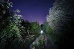 导致光的路在满天星斗的天空下 免版税库存图片