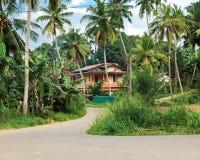 导致大房子的路,包围由可可椰子树和绿色植物 库存图片