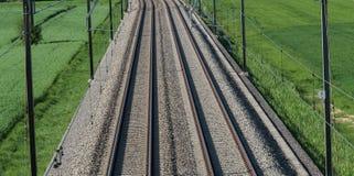 导致天际的几个铁轨在绿色领域中间  免版税图库摄影