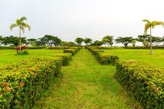 导致庭院的中心的绿草道路伴随b 图库摄影