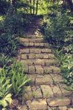 导致房子的一个美丽如画的楼梯在越南的密林 免版税库存照片