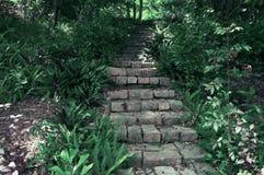 导致房子的一个美丽如画的楼梯在越南的密林 库存图片