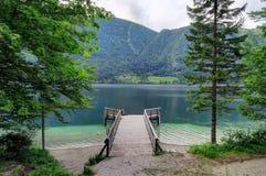导致湖Bohinj的木走道在斯洛文尼亚 免版税库存照片