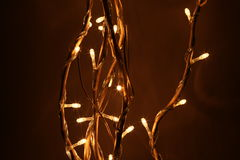导致的光结构树 免版税图库摄影