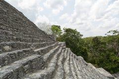 导致金字塔上面的台阶在卡拉克穆尔墨西哥 库存照片