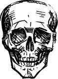 人的头骨 库存图片
