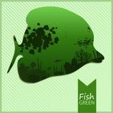 导航一条鱼的图象在绿色背景的 库存照片