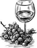 葡萄和酒 皇族释放例证