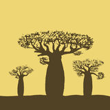 导航三棵猴面包树的例证在日落或日出 免版税库存照片