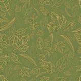 导航不同的形状秋天元素和模板秋叶的样式  对灰色绿色的米黄桔子 免版税图库摄影