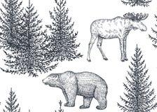 导航与手拉的动物和树的无缝的样式 皇族释放例证