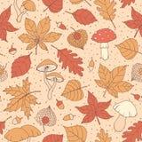 导航与橡木的秋天无缝的样式、白杨树、山毛榉、槭树、白杨木和欧洲七叶树叶子、蘑菇、橡子和空泡bro 皇族释放例证