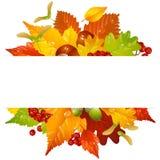 导航与秋天叶子2的秋天框架 免版税库存图片