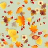 导航与红色和黄色秋叶的无缝的样式 图库摄影
