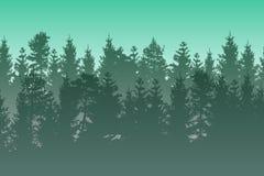 导航与绿色层状有薄雾的具球果森林的风景 免版税库存照片