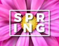 导航与美丽的五颜六色的花的春天例证在桃红色背景 与印刷术的花卉设计模板 库存图片