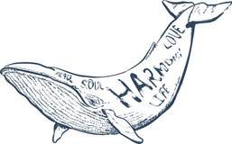 导航与鲸鱼,船舶手拉的字法的例证, 免版税图库摄影