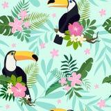 导航与toucan鸟的无缝的样式在与叶子和花的热带分支 库存照片