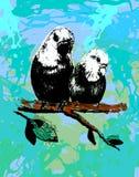 导航两只鸟,在eps的鹦鹉的例证 库存图片