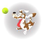 导航例证、滑稽的狗和网球,在白色背景 免版税图库摄影