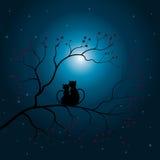 导航例证现出轮廓猫和树 皇族释放例证