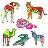 导航例证长颈鹿、斑马、鳄鱼、骆驼、蛇和老虎 颜色 库存图片