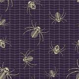 导航例证,作为与蜘蛛网的无缝的样式 库存照片
