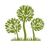 导航创造性的树的图象,自然概念 艺术符号illu 免版税库存照片