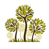 导航创造性的树的图象,自然概念 艺术符号illu 免版税库存图片