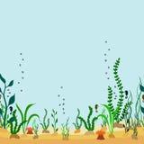 导航动画片海底无缝的装饰边界与海草的 免版税库存图片