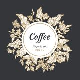 导航咖啡豆和分支模板在圈子