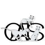 导航在三只猫白色背景的例证  库存图片