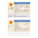 导航在平的样式的越南国际护照签证贴纸模板 免版税库存图片