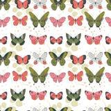 导航在淡色的叶子背景的绿色,珊瑚,桃红色和浅灰色的飞行的蝴蝶无缝的样式 皇族释放例证