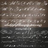 导航在葡萄酒维多利亚女王时代样式的手工制造剧本字体 免版税库存照片