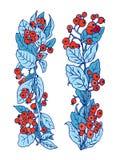 导航在诗歌选边界的枸子属植物橙色莓果蓝色叶子 免版税图库摄影