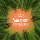 导航夏天海报构筑与在橙色bac的绿色棕榈叶 图库摄影