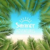 导航夏天海报构筑与在海滩colo的绿色棕榈叶 免版税库存图片