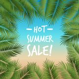 导航夏天海报构筑与在海滩colo的绿色棕榈叶 库存照片