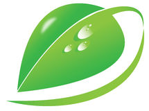 导航大绿色叶子,露滴,有机,自然,自然标志,环境企业商标,绿色象标志 库存图片