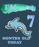 导航婴孩女孩或男孩的里程碑卡片 我是七个月ol 免版税图库摄影