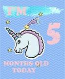 导航婴孩女孩或男孩的里程碑卡片 我是五个月 免版税库存图片