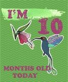 导航婴孩女孩或男孩的里程碑卡片 我是十个月 库存图片