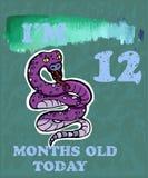 导航婴孩女孩或男孩的里程碑卡片 我是十二个月o 免版税库存图片