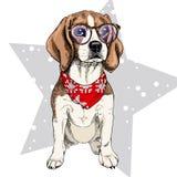 导航小猎犬狗佩带的冬天班丹纳花绸和玻璃画象  隔绝在星和雪 Skecthed颜色illustraion 图库摄影