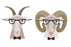 导航山羊、绵羊在玻璃和弓 动画片平的样式 免版税库存照片